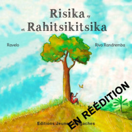 couv_risika-site-2017-reed
